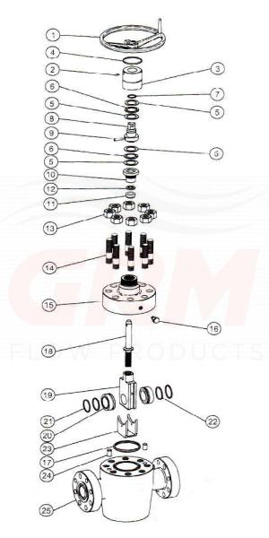 FLS gate valve exploded view